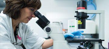 Fellowship Program   Department of Urologic Sciences